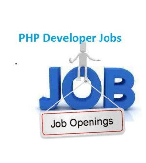 php developer hiring in sara technologies noida
